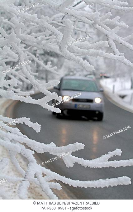 Trees alongside a road are covered with snow in Schierke, Germany, 20 January 2013. Arctic weather has returned to Germany