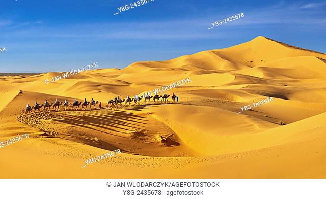 Tourists ride on camels, Erg Chebbi desert near Merzouga, Sahara, Morocco