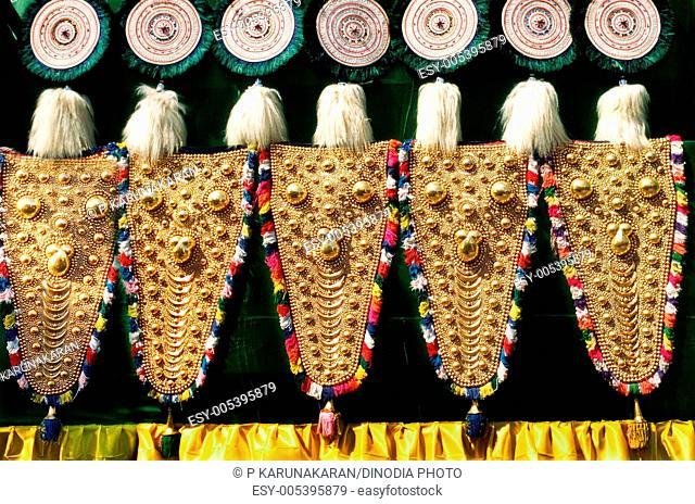 Elephant wares for caparison the animal Kerala India Asia