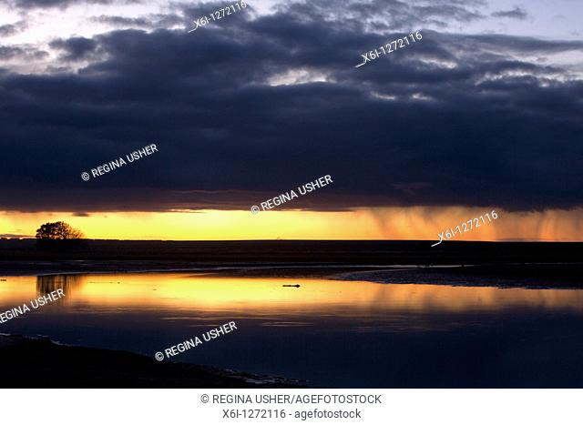 Sunrise over causeway, with rain showers, Holy Island, NNR, Northumberland, England