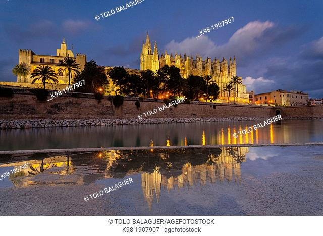 Spain, Balearic islands, Majorca, Palma, Palma cathedral at night (La Seu) and La Almudaina Palace