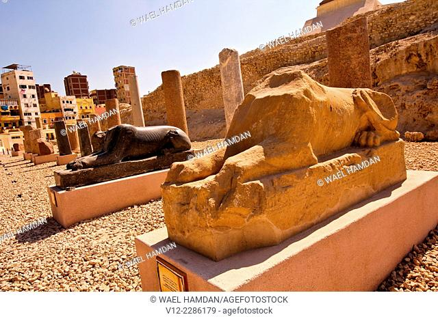Sphinx statues The Roman theater of Kom El-Dika, Alexandria. Egypt