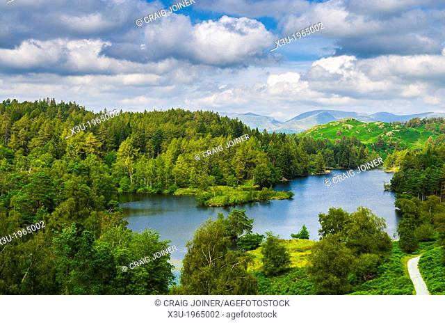 Tarn Hows surrounded by forest in the Lake District near Coniston, Cumbria, England
