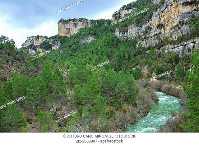 The river Tagus. Alto Tajo Natural Park. Guadalajara province, Spain