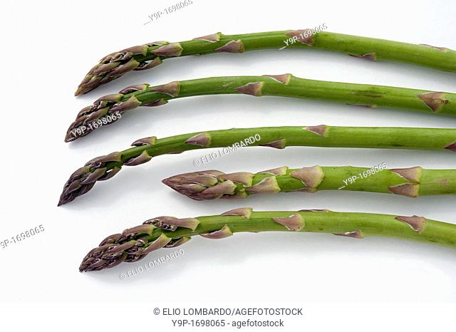 Five Green Asparagus on White Background