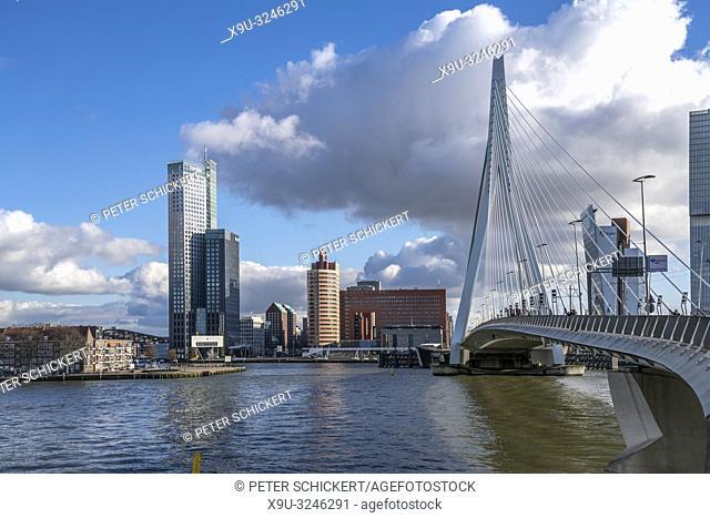 Erasmusbrücke und Hochhäuser in Rotterdam, Südholland, Niederlande   Erasmus bridge and skyscrapers, Rotterdam, South Holland, Netherlands