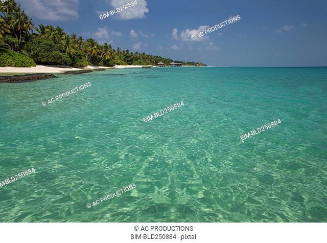 Scenic view of ocean beach