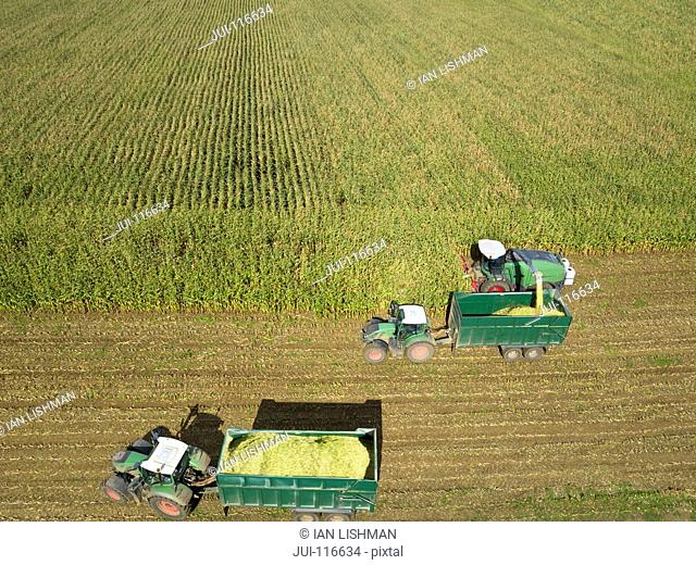 Aerial View Of Harvester Working In Field Of Maize