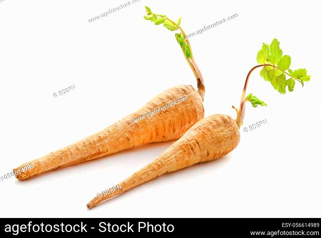 Carrot spreading leaves after harvesting over white background