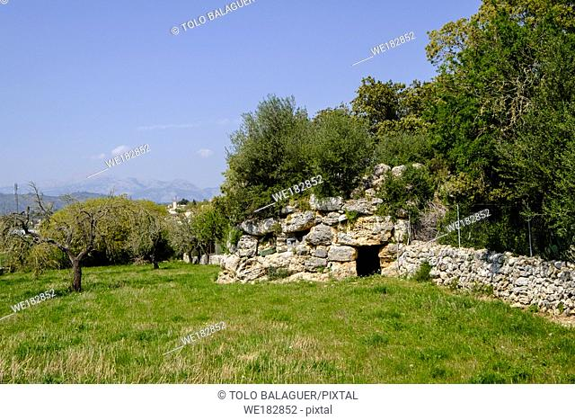 Talaiot des Racons, monumento arqueologico, Llubi, Mallorca, balearic islands, spain, europe