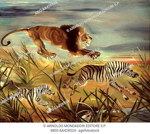 Lion attacking zebra Stock Photos and Images | age fotostock