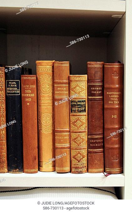Old Books in a gentleman's wardrobe