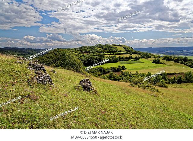 The Walberla (513.9 m high) the north peak of the Ehrenbürg (531.9 m high) in the foothills of Fränkische Alb with dolomite rocks, rural district Forchheim