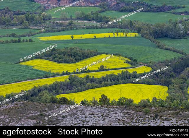 Agricultural fields, Montsec Range, The Pre-Pyrenees, Lleida, Catalonia, Spain, Europe