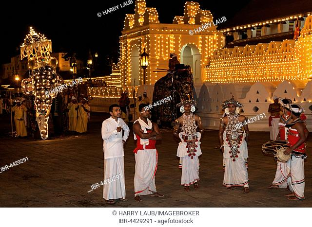 Kandy Dancers and decorated elephants, Esala Perahera Buddhist festival, Sri Dalada Maligawa or Temple of the Sacred Tooth Relic, Kandy, Central Province