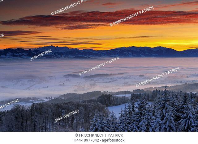 Alps, Alpine panorama, view, mountain, mountains, mountain panorama, trees, plain, Glarus Alps, mornings, Morning-red, Mürtschenstock, nature, fog, fog patches