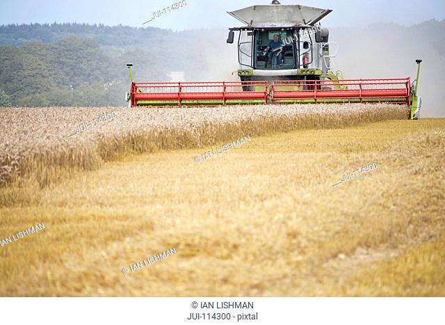 Front View Of Combine Harvester Harvesting Wheat Crop
