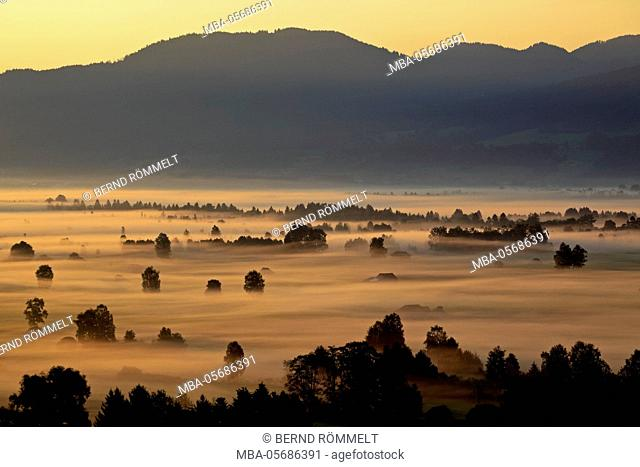 Germany, Bavaria, Upper Bavaria, Bavarian foothills of the Alps, Tölzer country, view about the Kochelmoos, Kochler Moore, Kochel Moore on the Zwiesel
