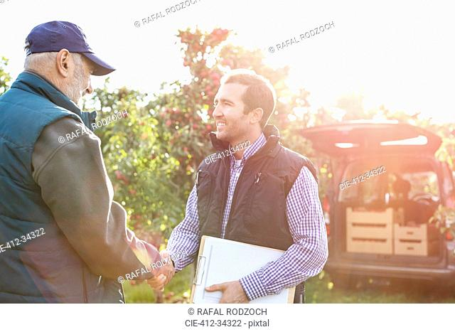 Male farmer and customer handshaking in sunny apple orchard