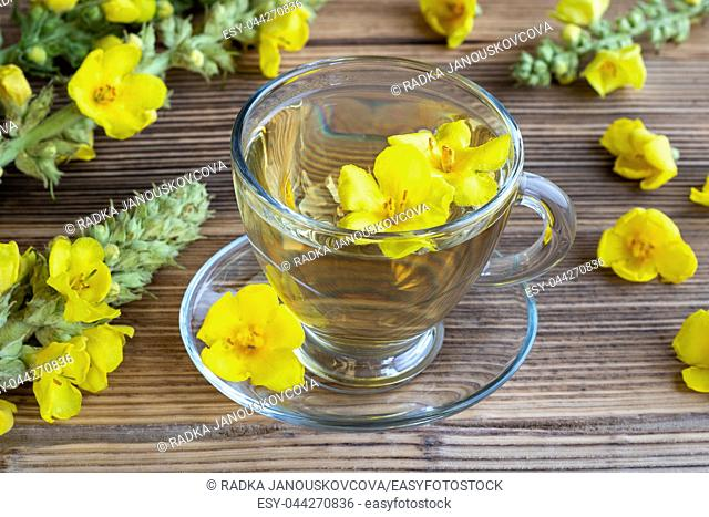 A cup of herbal tea with fresh mullein flowers
