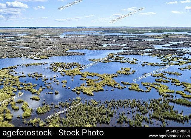 USA, Maryland, Drone view of marshes along Nanticoke River on Eastern Shore