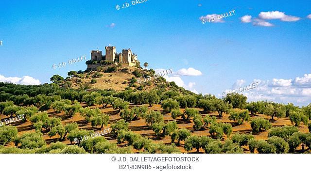 Castle, Almodovar del Rio. Cordoba province, Andalusia, Spain