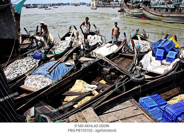 A pile of Hilsha and other fishes are unloaded from a trawler at Fishery Ghat in Chittagong It will be delivered to the different market places in Bangladesh...