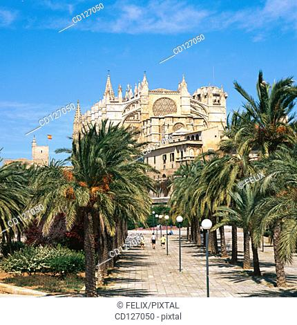 Boulevard and the gothic cathedral in background. Palma de Mallorca. Majorca. Balearic Islands. Spain