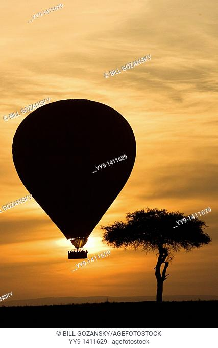 Hot Air Balloon over the Masai Mara National Reserve, Kenya