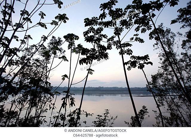 Sunrise on the Tambopata river. Amazonia basin. Peru