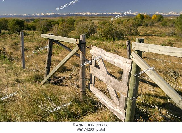 Fence gate in foothills of Canadian Rockies, Alberta, Canada