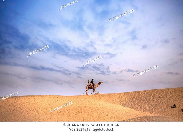 Nomad on a camel in the Thar desert, Rajasthan, India