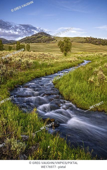 Rose Creek at Lamar Buffalo Ranch, Yellowstone National Park, Wyoming