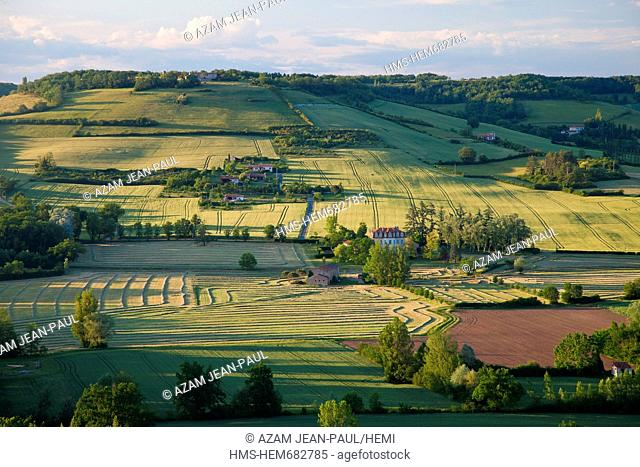 France, Tarn, Cordes sur Ciel, the countryside in June, at sunset