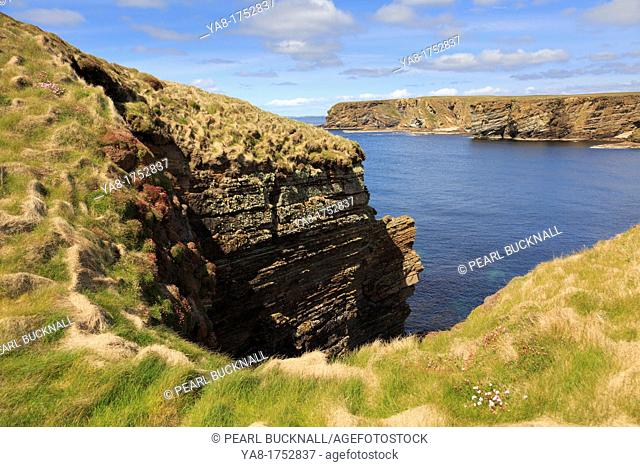Burwick, South Ronaldsay, Orkney Islands, Scotland, UK, Great Britain, Europe  Secluded cove on rocky coastline from coast path on seacliffs