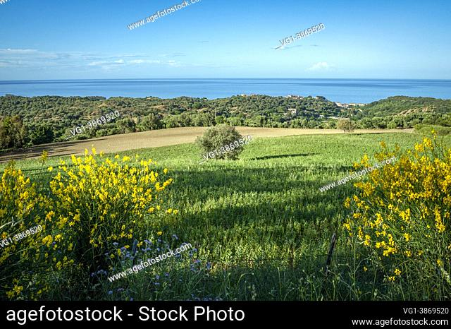 Torretta di Crucoli, district of Crotone, Calabria, Italy, Europe, view of the Ionian coast with the countryside of the territory in the foreground