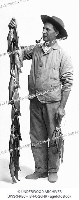 United States: c. 1915 A man holding two large stringers of fish