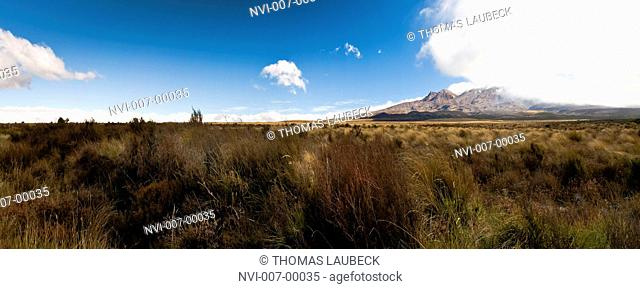 Panorama of the Central Plateau in Rangipo Desert, New Zealand