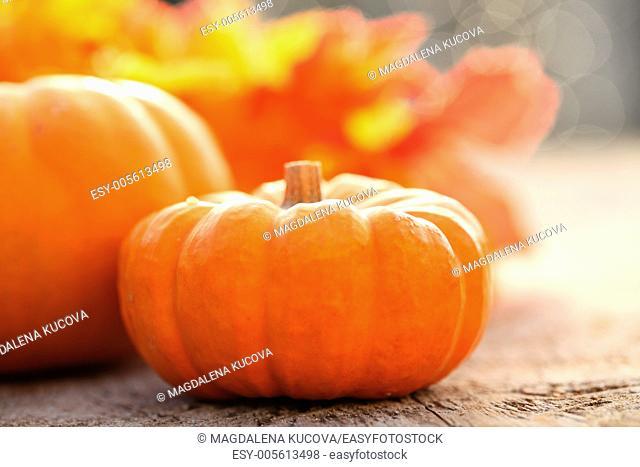 Autumn arrangement on wooden table. Selective focus, shallow DOF