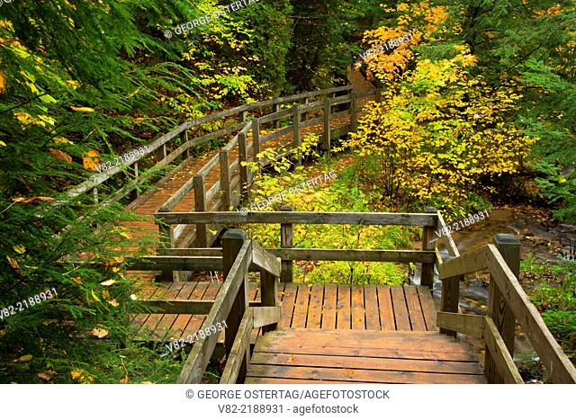 Boardwalk at Wagner Falls, Wagner Falls Scenic Site, Michigan