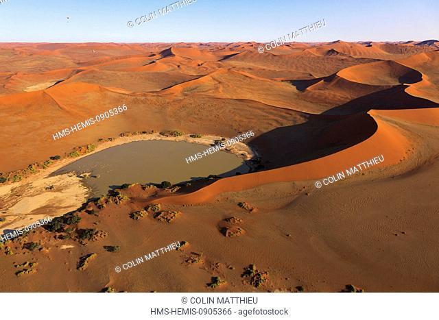 Namibia, Hardap region, Namib desert, Namib-Naukluft national park, Namib Sand Sea listed as World Heritage by UNESCO, Sossusvlei, sand dunes