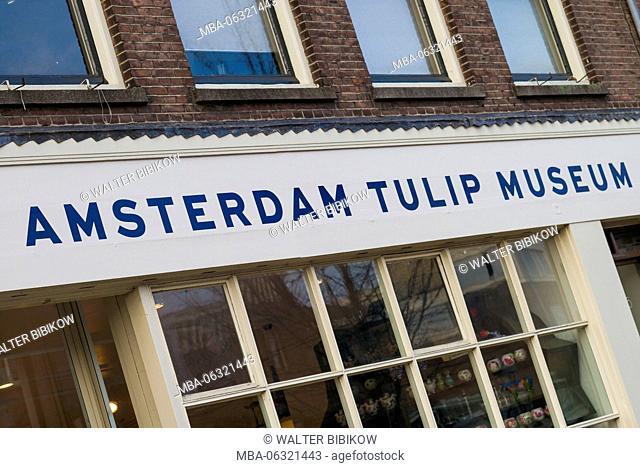 Netherlands, Amsterdam, Amsterdam Tulip Museum, exterior