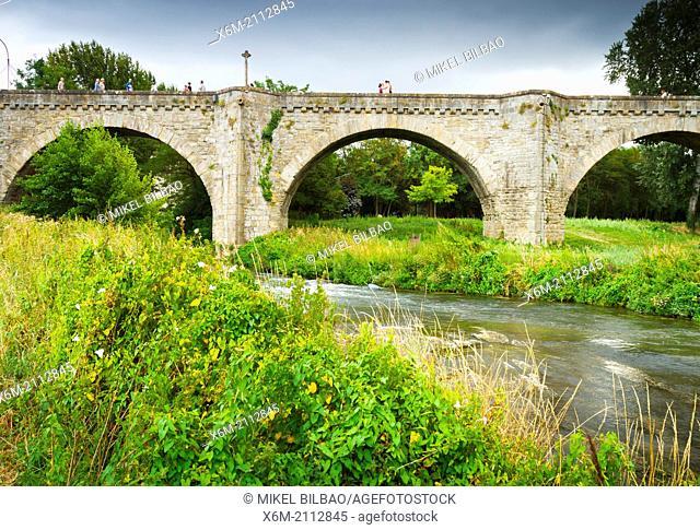 Pont Vieux (old bridge) and Aude river.Carcassonne medieval city. France, Europe