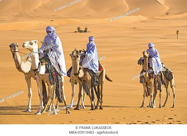 Ride Africa, Libya, sand-desert, Tuaregs, camels, caravan