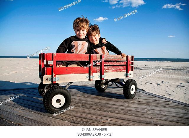 Two brothers in cart on beach with arms around each other