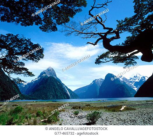 Milford Sound. South Island, New Zealand