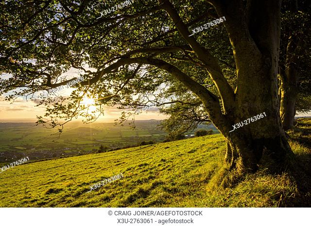 Autumn sunset at Draycott Sleights in the Mendip Hills. Somerset. England