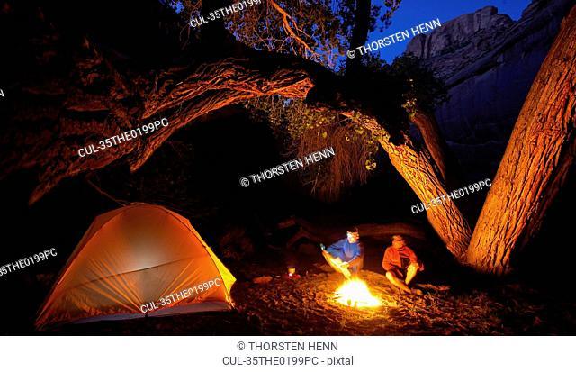 Lit campsite under curved tree