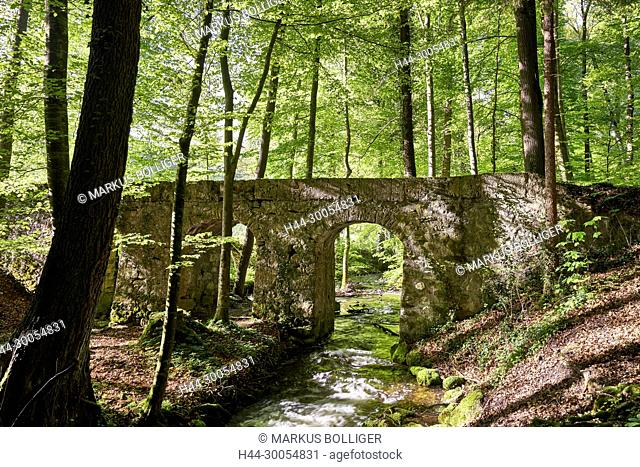 bridge, wood, brook, Roman's bridge, deciduous forest, spring, spring foliage, (No proposals), Amletentäli, waters, assembly-line waters, brook, wood Bach, NSG