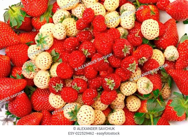 Ripe White and Red Strawberries on plate